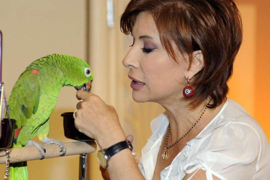 alda-deusanio-e-il-pappagallo